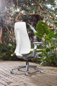 Krzeslo_Hawroth_Fern_1